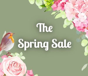 The Spring Sale