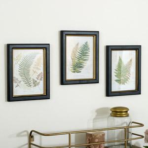 Set of 3 Framed Fern Wall Prints