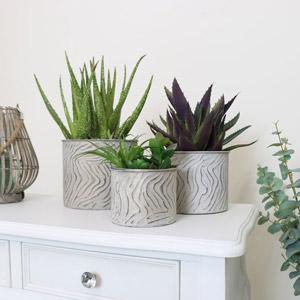 Set of 3 Zebra Print Plant Pots