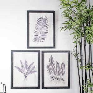 Set of 3 Botanical Fern Wall Prints